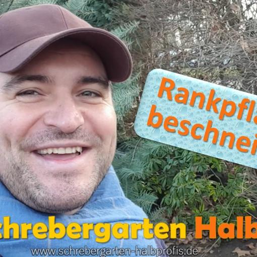 schrebergarten, tutorial, garten, gärtner, kleingarten, kleingärtner, gartenarbeit, gartentipps, gartenliebe, gaygarden, parzelle, Berlin, laubenliebe, garden, gardening, schrebergarten, schrebergartenliebe, instagardens, pflanzen, mygarden, gartenzeit, gardendesign, gartengestaltung, meingarten, lovemygarden, sprengen, bewässern, sprenger, schlauch