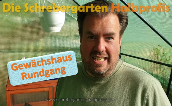 schrebergarten, tutorial, garten, gärtner, kleingarten, gartenarbeit, gartentipps, gartenliebe, gaygarden, parzelle, Berlin, laubenliebe, garden, gardening, gaygarden, gaygardener, schrebergarten, schrebergartenliebe, pflanzen, gartenzeit, meingarten, Parzelle, gartenblog, binimgarten, gartenglück, Gewächshaus